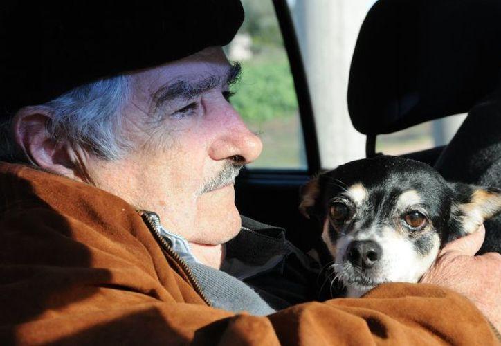 """José Alberto Mujica, político uruguayo con su fiel mascota """"Manuela"""". (Foto: AP)"""