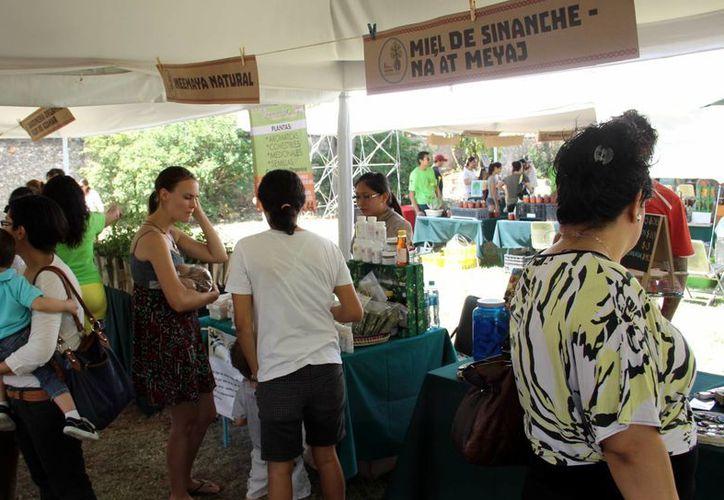 Esta semana, la Asociación Mérida Verde organizó una expo por el Día de la Tierra. (Milenio Novedades)