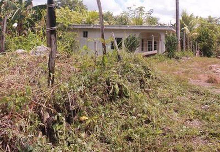Se proyecta realizar la instalación de postes de energía eléctrica así como el cableado en la colonia Nueva Creación. (Edgardo Rodríguez/SIPSE)
