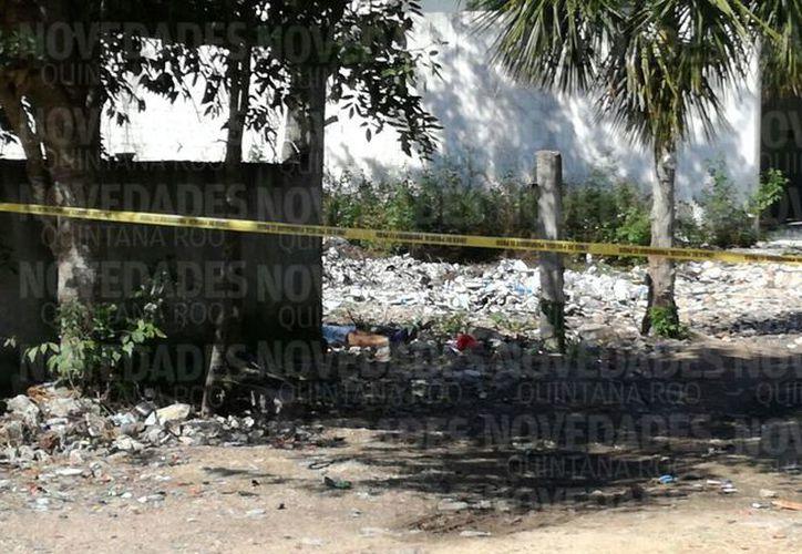 Matan a una persona en Puerto Aventuras, Quintana Roo. (Adrián Barreto/SIPSE)