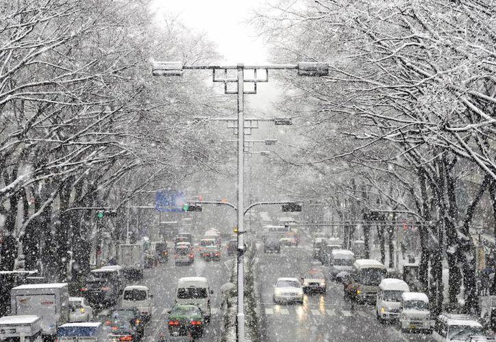 Coches circulan por la calle comercial de Omotesando en Tokio, Japón, durante una fuerte nevada. (EFE/Archivo)