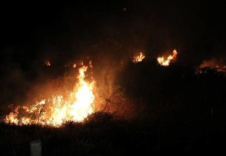 El equipo de Estados Unidos atenderá los incendios que se registren durante su presencia en México. (Redacción/SIPSE)