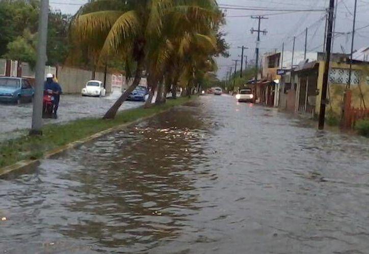 El 'Operativo Tormenta' continuará hasta que el agua fluya con normalidad hacia el desagüe. (Twitter: @Kiquito_11)