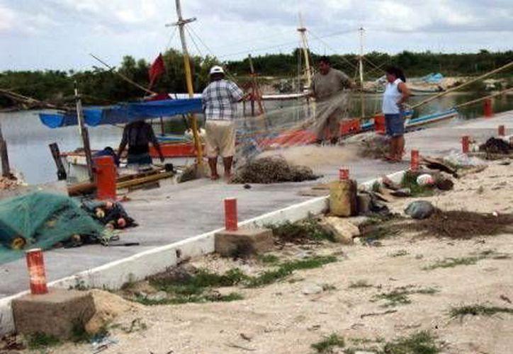 """Anuncian el inicio del """"Programa Integral de Prevención de Accidentes por Descompresión"""" para pescadores comerciales. (Milenio Novedades)"""