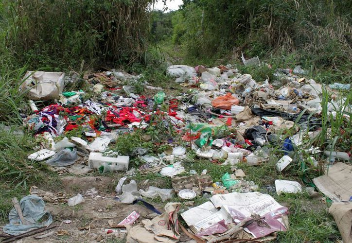Familias de Chetumal viven entre basureros clandestinos, exigen limpieza. (Enrique Mena/SIPSE)