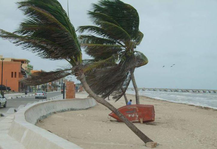 Los fuertes vientos, que levantaron incluso la arena, provocados por el frente frío número 21 de la temporada, dejaron una playa literalmente desierta, en Progreso. (
