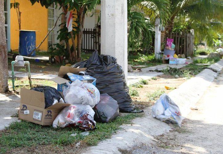 El Ayuntamiento pretende ahorrar tiempo a los recolectores de residuos, con la colocación de contenedores. (Adrián Barreto/SIPSE)