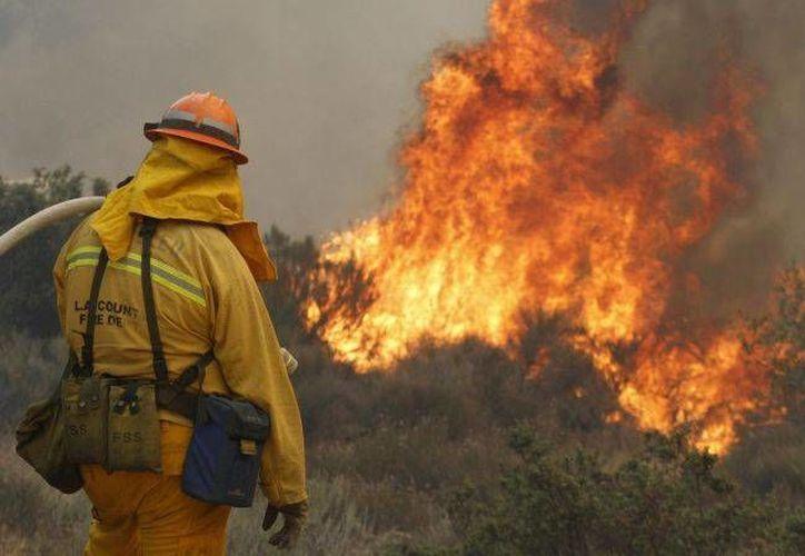 En las labores de contención participaban más de mil bomberos. (Archivo/Reuters)