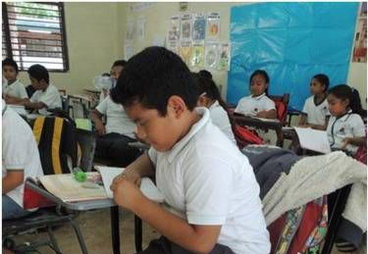 Se entregaron 770 sillas de paleta a un total de 19 escuelas. (Redacción/SIPSE)