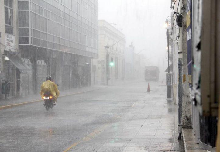 La lluvia de ayer estuvo acompañada de fuertes ráfagas vientos que ocasionaron diversos perjuicios. (Juan Carlos Albornoz/SIPSE)