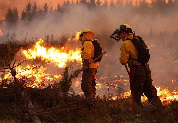 La Semadet exhorta a la población a extremar las medidas precautorias para evitar la propagación del fuego. (Emol.com)
