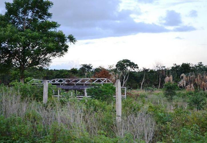 Actualmente hay ranchos en Quintana Roo que se encuentran en completo abandono. (Edgardo Rodríguez/SIPSE)