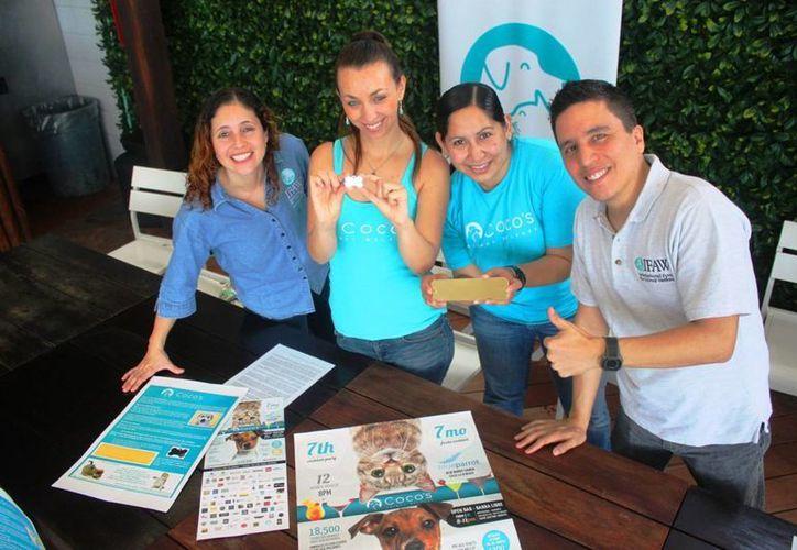 Durante el tiempo de esta iniciativa se han logrado esterilizar más de 18, 500 animales. (Daniel Pacheco/SIPSE)