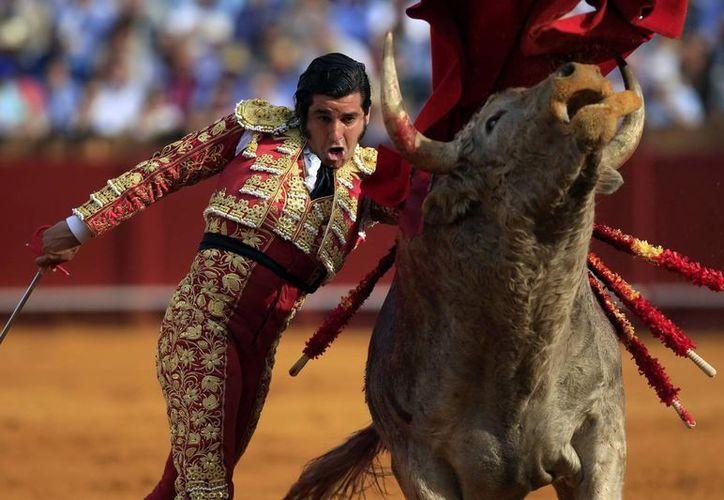 El ibérico José Antonio Morante de la Puebla llegó desde el sábado a la ciudad de Mérida. (SIPSE)
