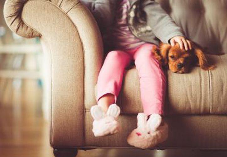 La presencia de mascotas ayuda a mejorar la salud del menor. (Foto: Internet)