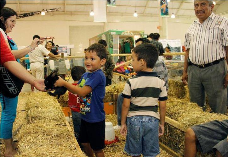 En la Expocampo 2013 los niños tuvieron oportunidad de aprender que los animales no son juguetes e implican una gran responsabilidad. (Cortesía)