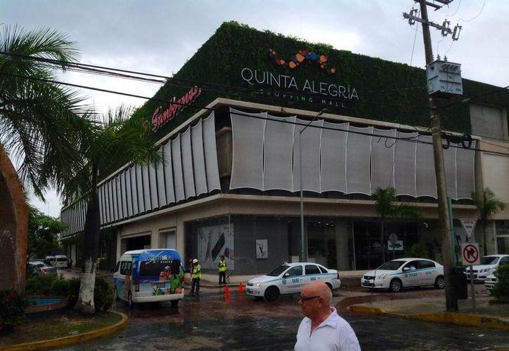"""En la plaza Quinta Alegría se realizará una pasarela para llevar a cabo la recaudación a favor de """"Acción animal"""". (Yesenia Barradas/SIPSE)"""