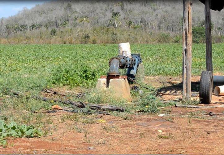 Les resulta caro aplicar la tecnología en pequeños cultivos, debido a que el equipo requiere de diésel y de electricidad.