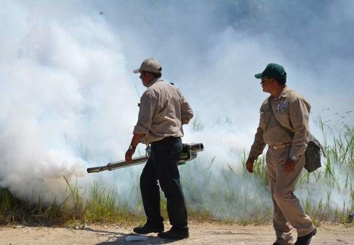 Para cumplir como Entorno Saludable los lugares estar libres de criaderos de mosquitos, contar con aseo, buen manejo de la basura y ser libres de humo. (Tomás Álvarez/SIPSE)