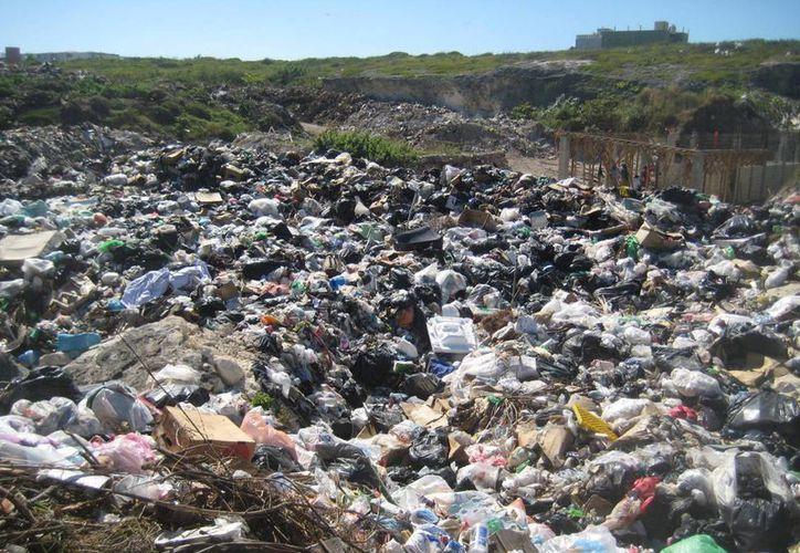 Continúa acumulándose la basura en la isla. (Lanrry Parra/SIPSE)