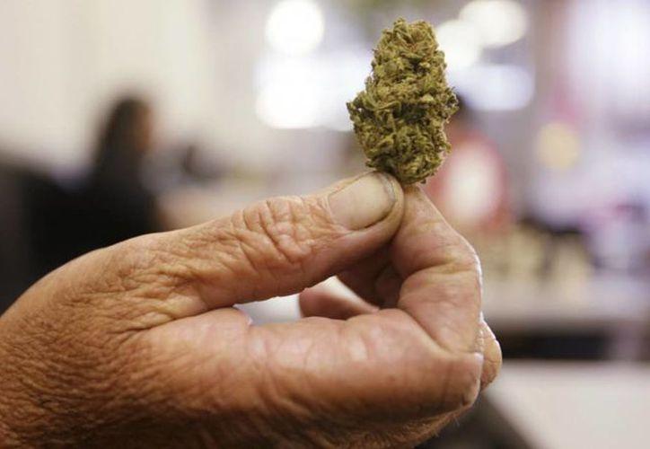 El Polo Norte tendrá el próximo año dispensarios de marihuana medicinal. Foto de contexto. (Archivo/AP)