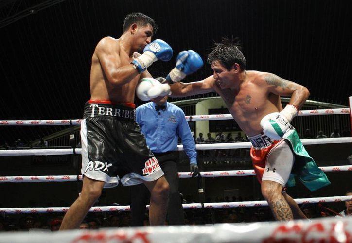 """Iván """"Terrible"""" Montero ganó por puntos a Rodrigo Mejía. (SIPSE)"""