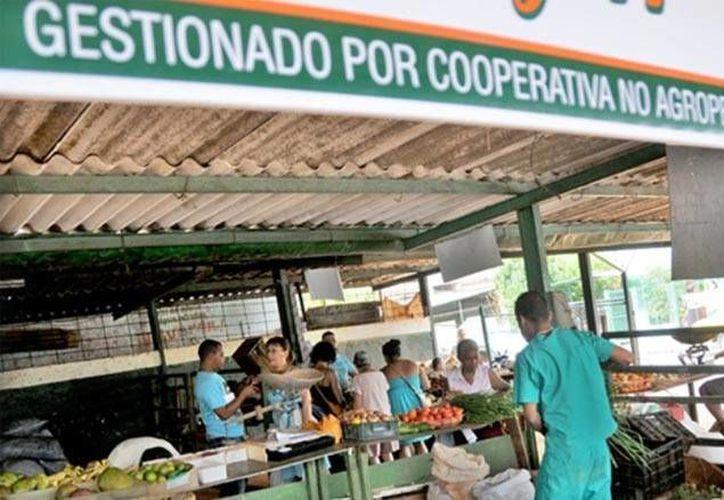 Se espera que la cantidad de cooperativas en Cuba aumente paulatinamente y el gobierno acceda a otorgarles mayores facilidades. (cubacontemporanea.com)