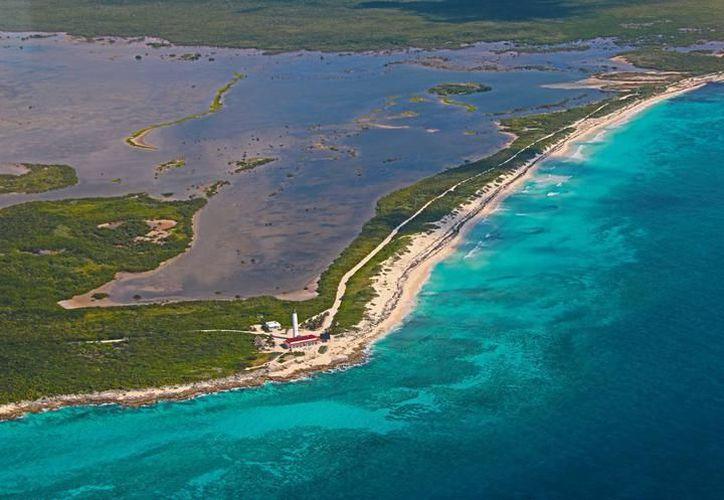 Expertos trabajan para proteger la reserva ambiental. (Foto: Redacción/SIPSE).