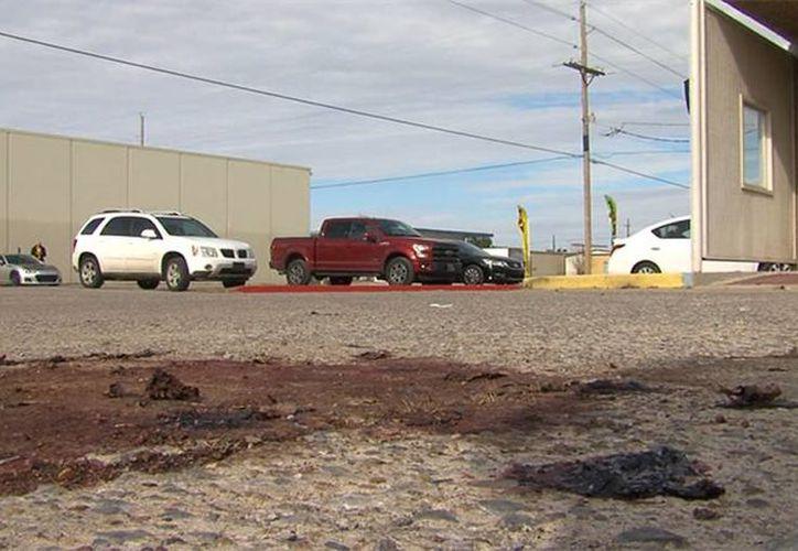 El cadáver del jabalí fue descubierto por un policía.  (kswo.com)