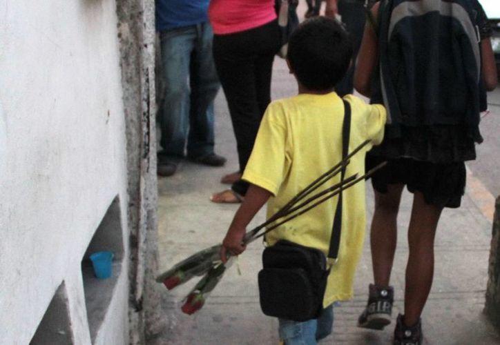 La Prodemefa busca evitar que los menores sean explotados y saber si las familias abusan de los pequeños de otras formas. (SIPSE)