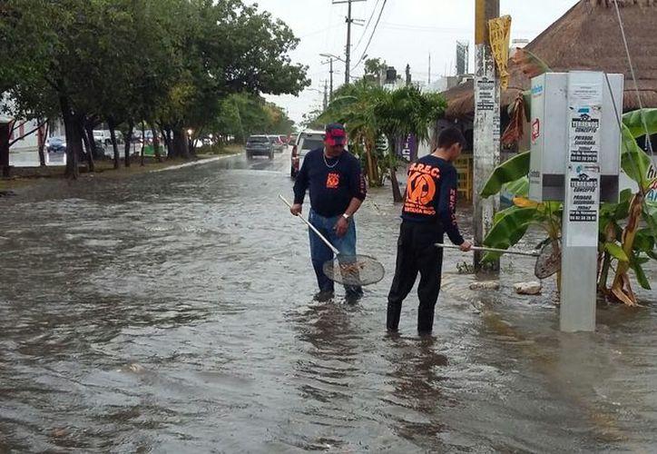 Bomberos han realizado operativo de limpieza en alcantarillas, de las principales avenidas de Cancún. (SIPSE)