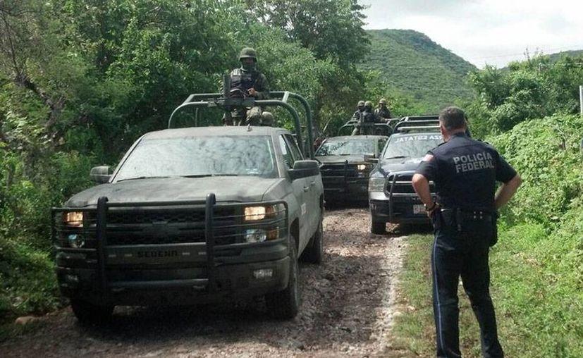 Peritos argentinos identificaron restos humanos encontrados en una de las fosas clandestinas de Guerrero. Ninguno de ellos corresponde a normalistas desaparecidos de Ayotzinapa. (Archivo/NTX)