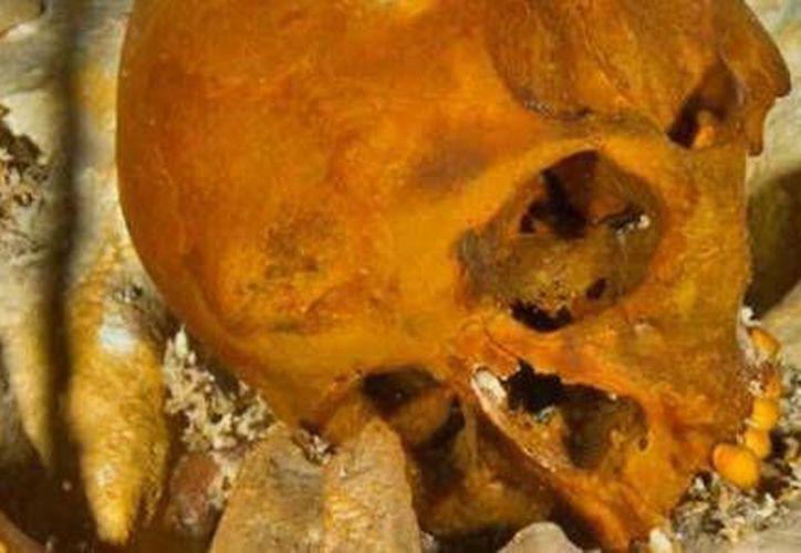 El eslabón perdido en la historia del hombre americano, como fue llamada la joven de 15 años, fue encontrada en el cenote Hoyo Negro. (Cortesía/El Financiero)