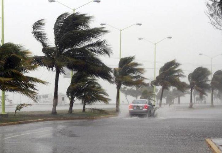 La experiencia será un respaldo para afrontar la contingencia en Cancún y Puerto Morelos. (Contexto/Internet)