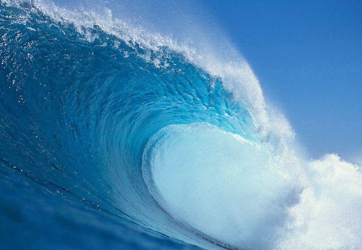 Dinesh Kumar Ranganathan, de 28 años, se perdió en las aguas de la costa de Goa, en el sudoeste de India. (Foto: Contexto)
