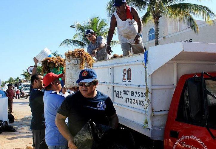 Personal de Bomberos y Protección Civil han participado en las brigadas de limpieza que se organizan en Cozumel. (Redacción/SIPSE)