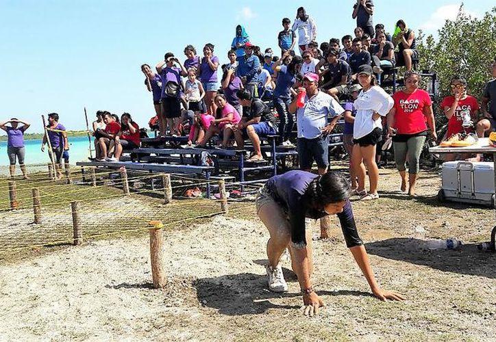 El Bacatlón se llevó a cabo en el parque El Ecológico y se realizaron obstáculos dentro de la laguna con una montaña inflable en tierra y las llamadas escaleras locas, entre otras. (Javier Ortiz/SIPSE)