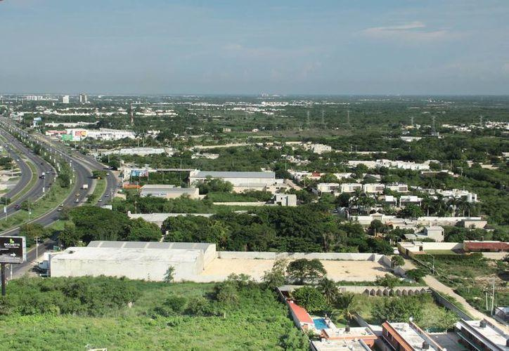 Los desarrolladores de vivienda buscan aprovechar todos los espacios de Mérida, con fraccionamientos en los ue construyen entre 15 y 20 casas. (Milenio Novedades)
