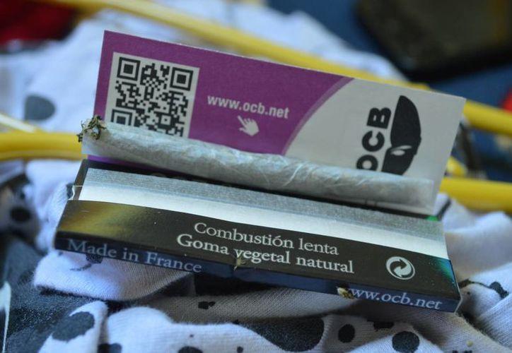El consumo de drogas, incluida la cannabis, empieza a los 10 años, según las estadísticas. (Ángel Castilla/SIPSE)