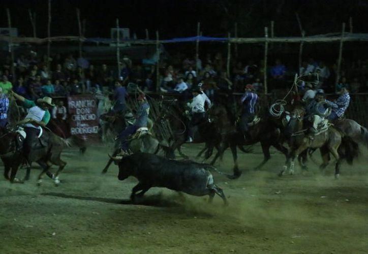 Mejorarán las medidas de seguridad en las corridas de toros. (Milenio Novedades)