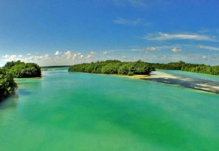 """La transmisión de la nueva serie """"Patrimonio Natural en México"""" inició ayer por el Canal Once. (Foto de Contexto/Internet)"""