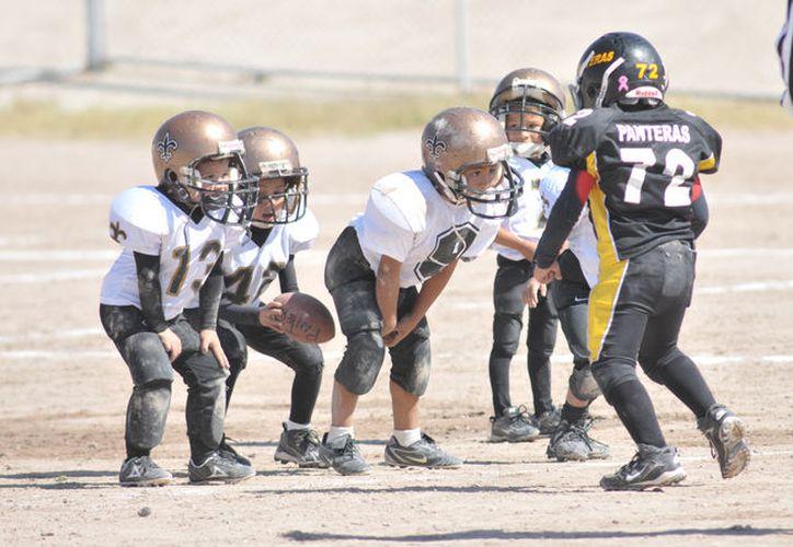 La propuesta pretende que el deporte, no se practique en menores de 12 años, debido a que por la inmadurez del cerebro que se tiene a esa edad.