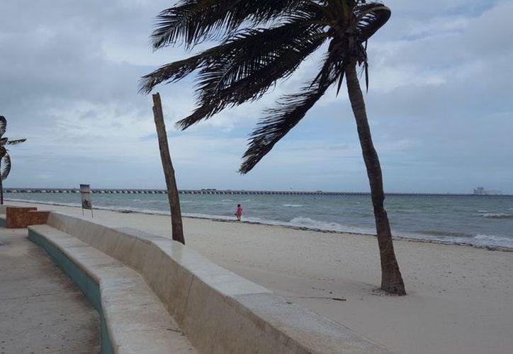 'Franklin' ha provocado en la costa oleaje elevado. (Foto: Gerardo Keb/Milenio Novedades)