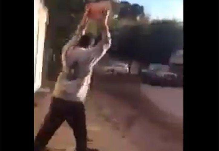 La agresión contra el pastor alemán fue grabada por una persona que poco pudo hacer para detenerla. (Captura de pantalla)