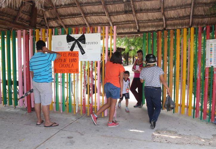 Maestros de Playa del Carmen organizaron una colecta de alimentos y medicinas para enviar a sus colegas de Oaxaca. (Adrián Barreto/SIPSE)