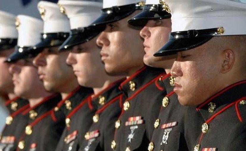 Unos 800 miembros de la Armada fueron sacados del lugar. (rt.com)