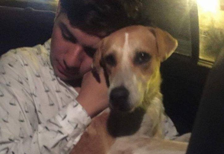 """El joven se quedó con el perrito, a quien nombró """"Firulais"""". (Foto: Facebook)"""
