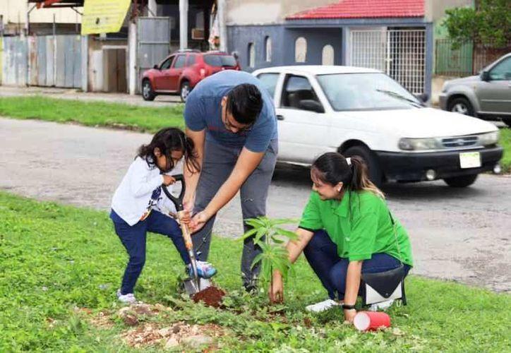"""Este fin se semana las familias se dieron cita en la """"Inalámbrica"""" para reforestas el área. (Foto: redes sociales)"""