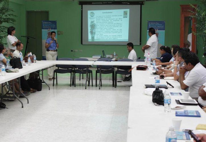 El Comité Estatal de la Tortuga Marina realizó su primera reunión. (Adrián Barreto/SIPSE)