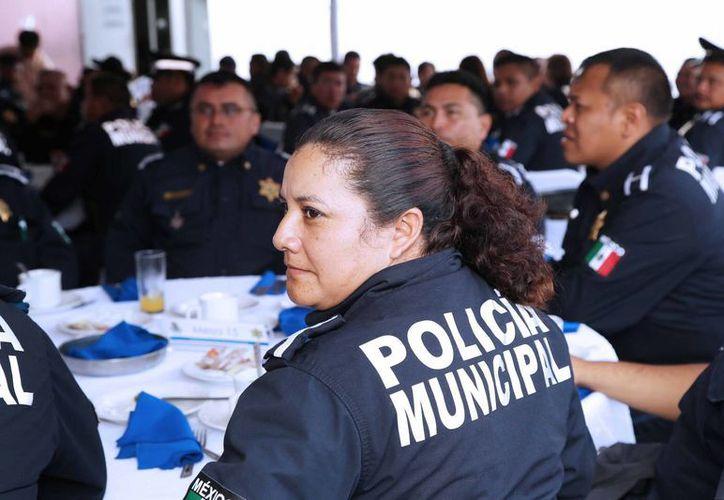 Esta semana la Policía Municipal de Mérida cumplió su 11 aniversario. (SIPSE)